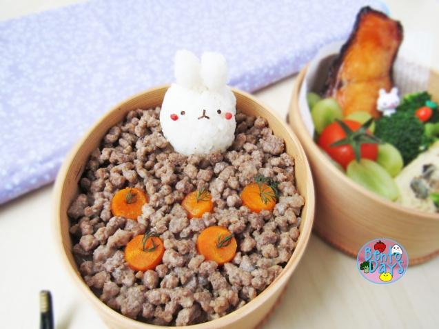 Molang rabbit planting carrots spring bento